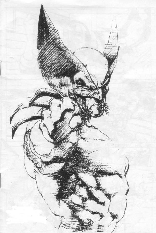 wolverine cartoon character sketches11