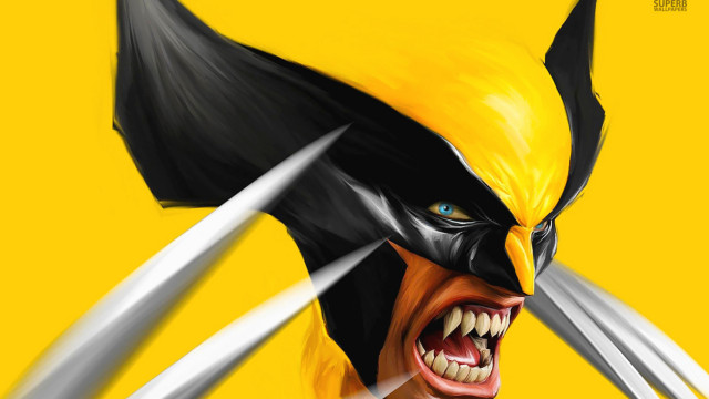 Wolverine hd wallpapers for pc (18)