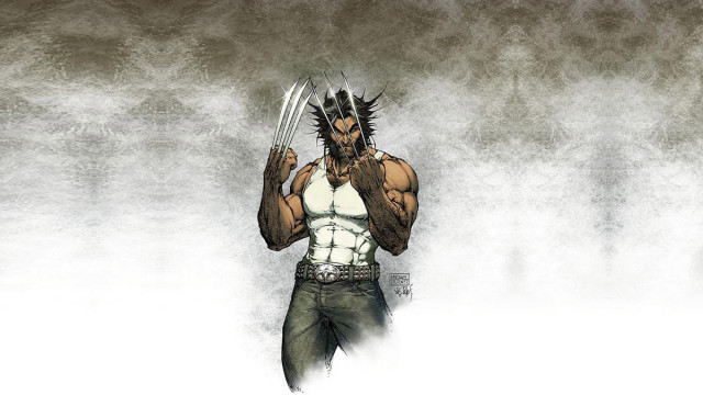 Wolverine hd wallpapers for pc (27)