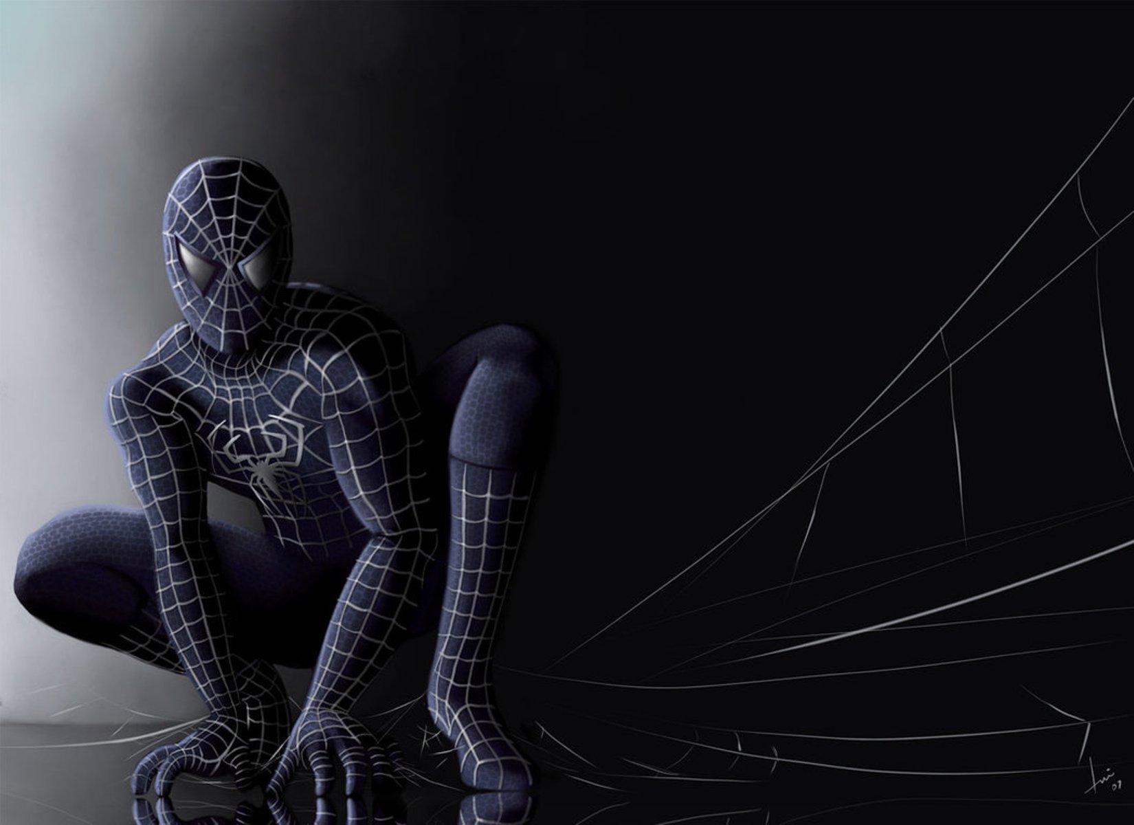 spiderman wallappers for desktop (18)