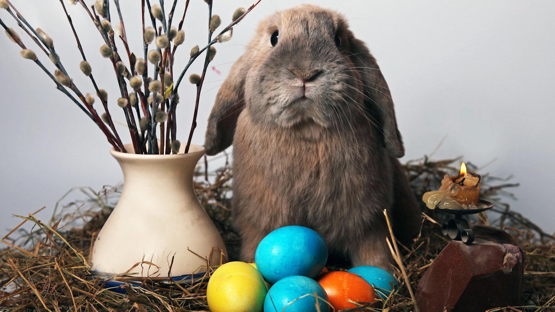 35 Happy Easter Desktop Wallpaper HD For Free