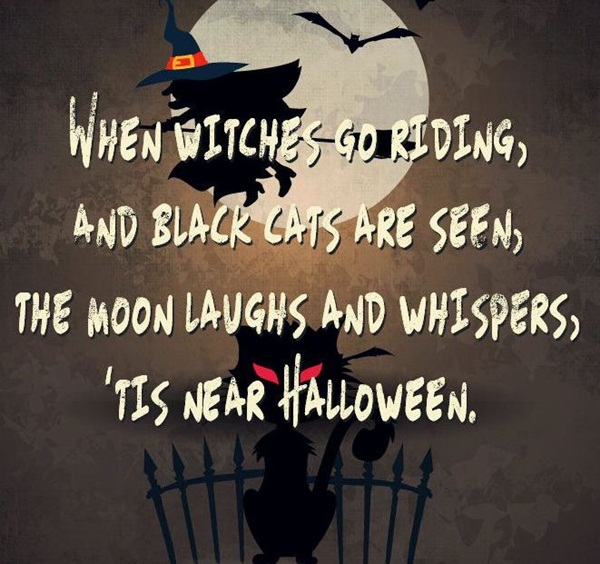 50 Best Happy Halloween Quotes Wishes Greetings And Sayings With Pictures: 50 Funny Happy Halloween Quotes For Halloween Cards