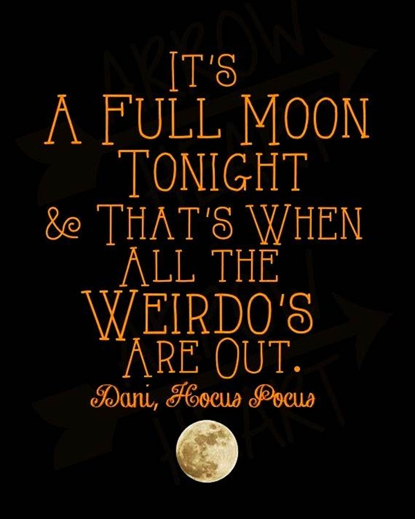 best funny halloween quotes and saying for halloween cards9-009
