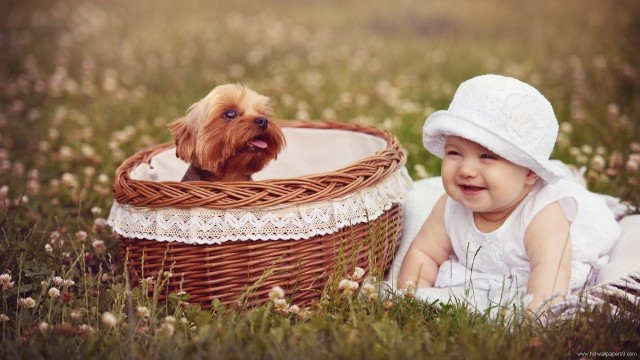 Small and Cute Baby Wallpaper download (12)