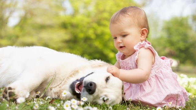 Small and Cute Baby Wallpaper download (15)