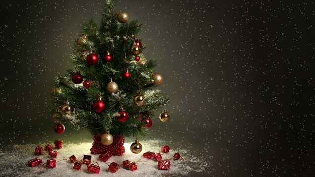 beautiful Christmas tree wallpaper (12)