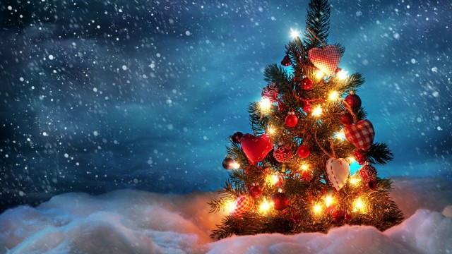 beautiful Christmas tree wallpaper (2)