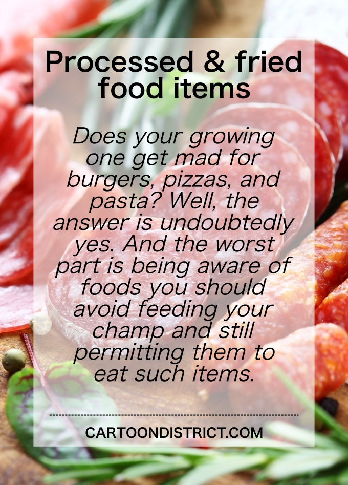 Foods You Should Avoid Feeding Your Champ