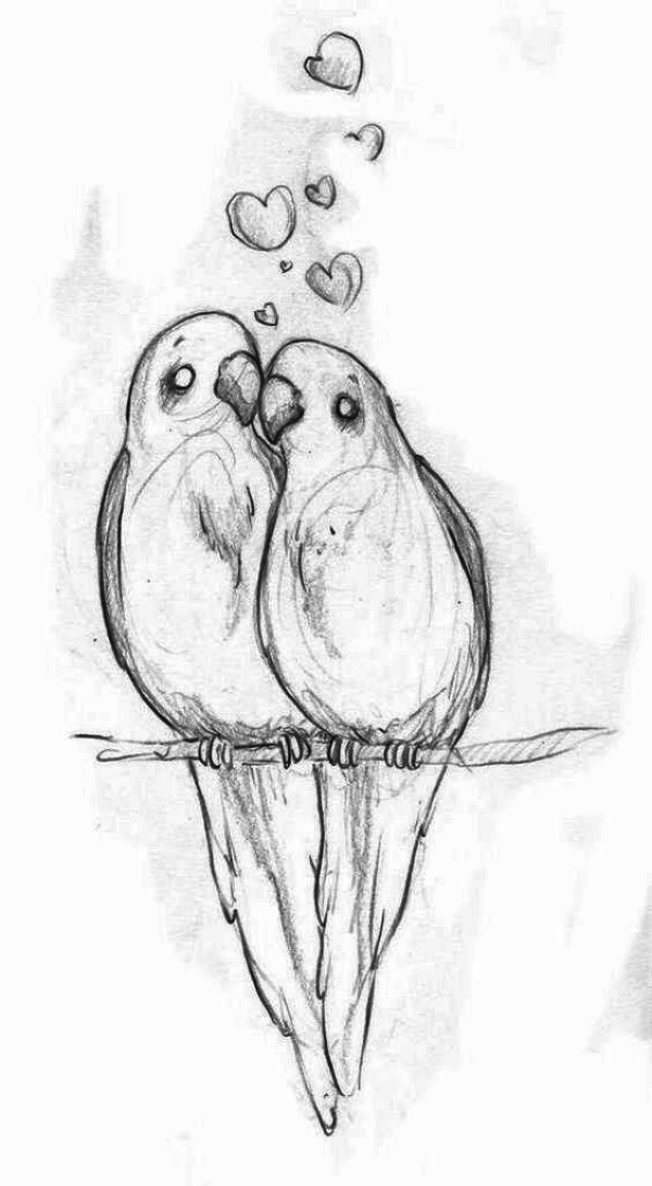 Parrots : Cool and Easy Things to Draw when bored