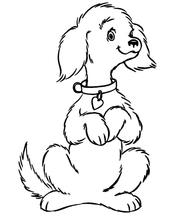 Cartoon Dog Sitting Down Drawings