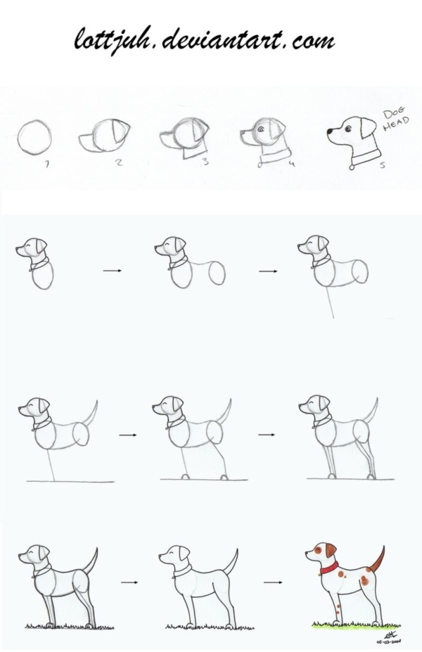 Dog Step By Step Drawing Dog Stepstep Drawing Drawing Cartoon Dog