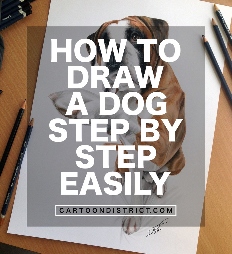 How to draw a Dog Step By Step Easily