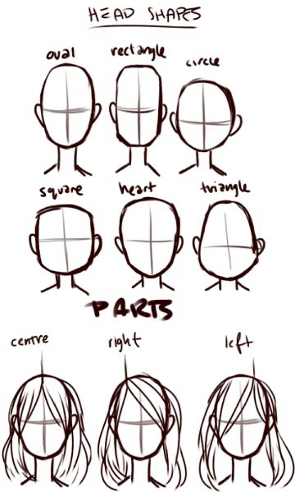 How to Draw a Male or Female Face