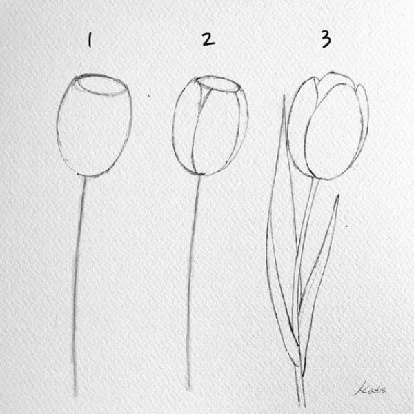 42 Simple And Easy Flower Drawings For Beginners